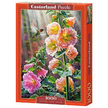 Selecta Castorland legpuzzel na de Regen 1000 stukjes